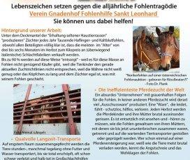 Flyer-Beiblatt Seite 1.jpg