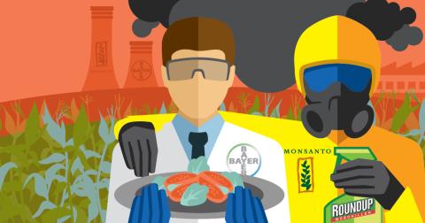 MonsantoBayer